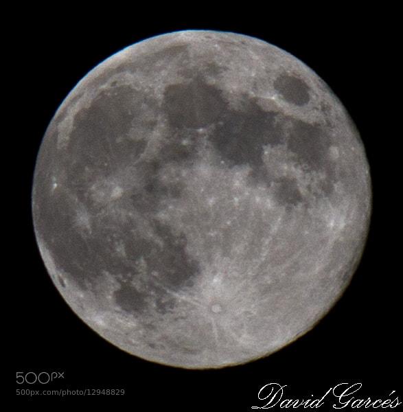 Photograph Luna azul by David Garcés on 500px