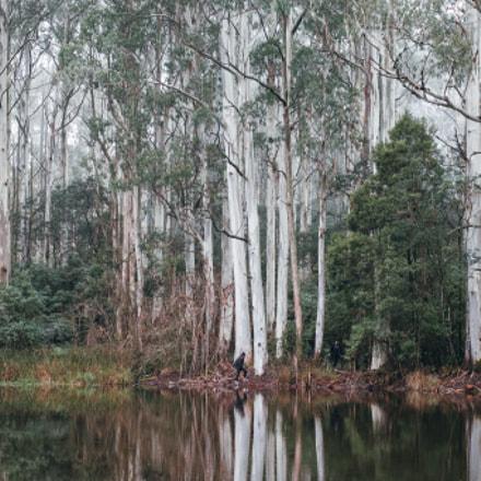 Sanatorium Lake