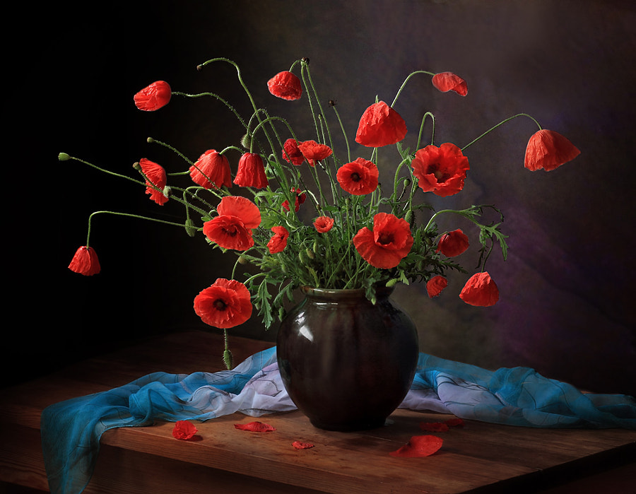 With a bouquet of poppies, автор — Tatiana Skorokhod на 500px.com