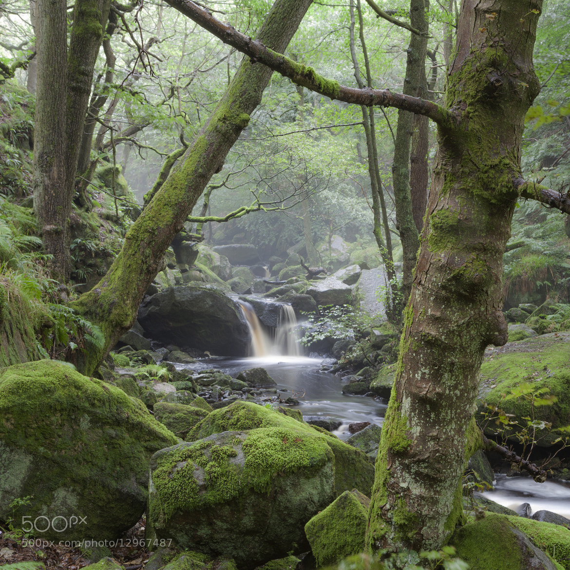 Photograph Padley gorge i by Terry Gibbins on 500px
