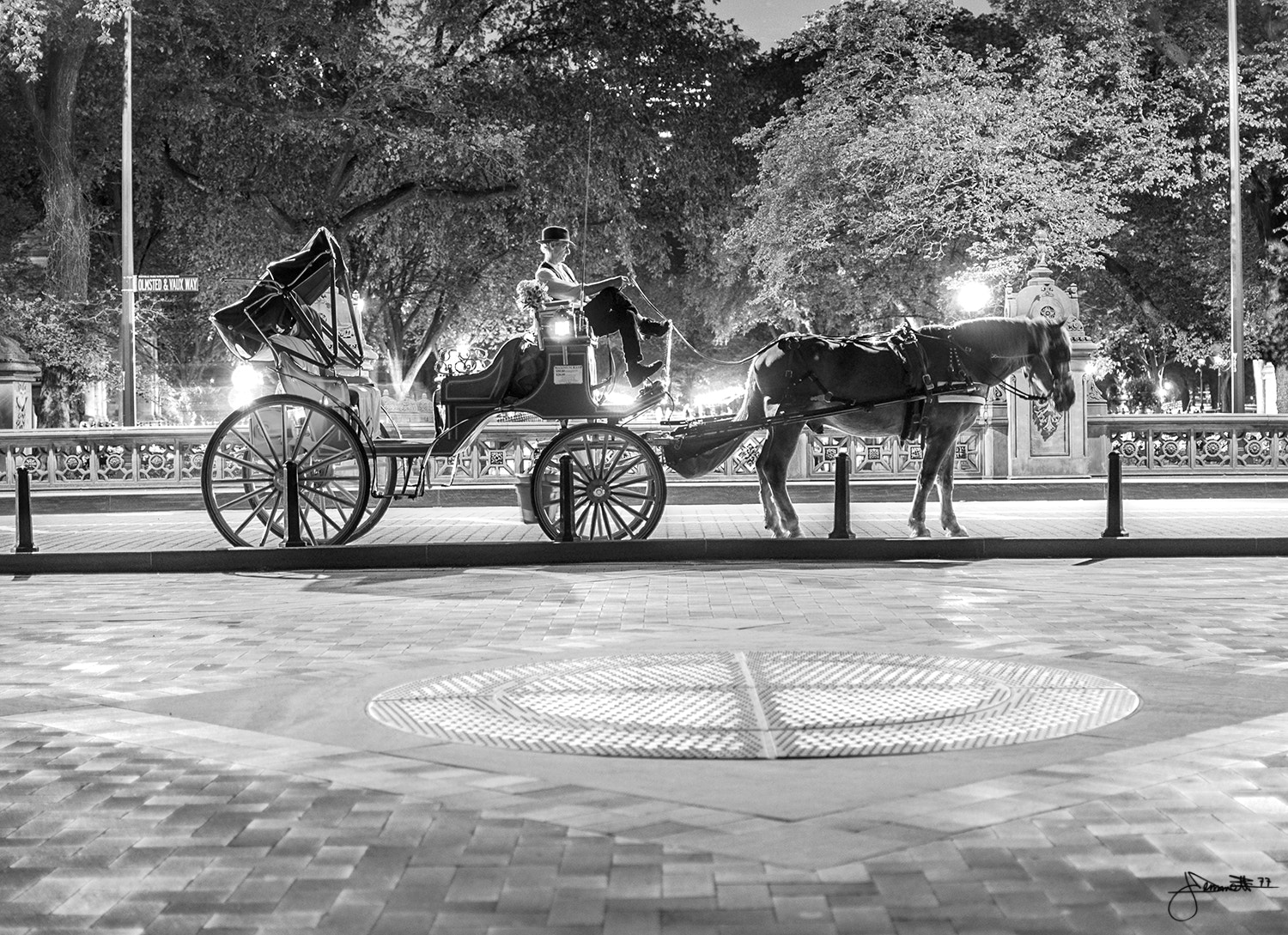Photograph Horse Carriage by Justin Demmett on 500px