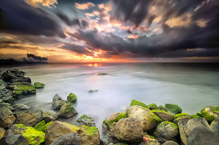 Photograph morning at manyar by Tut Bolank on 500px