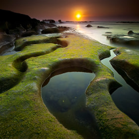 the hulk by Tut Bolank (TutBolank)) on 500px.com
