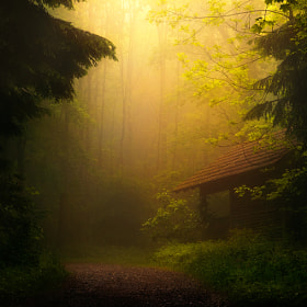 Hänsel und Gretel by Robin Halioua (Aliruo)) on 500px.com