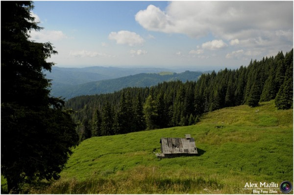 The Carpathian Mountains  by Alex Mazilu on 500px.com