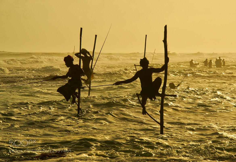 Photograph stilt fishing by hamni juni on 500px