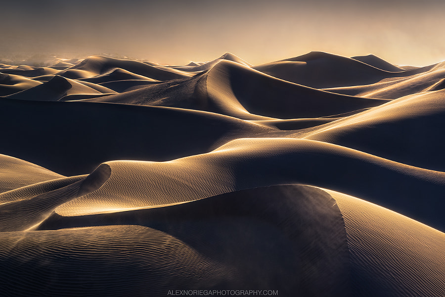 Ballad of Gales by Alex Noriega on 500px.com