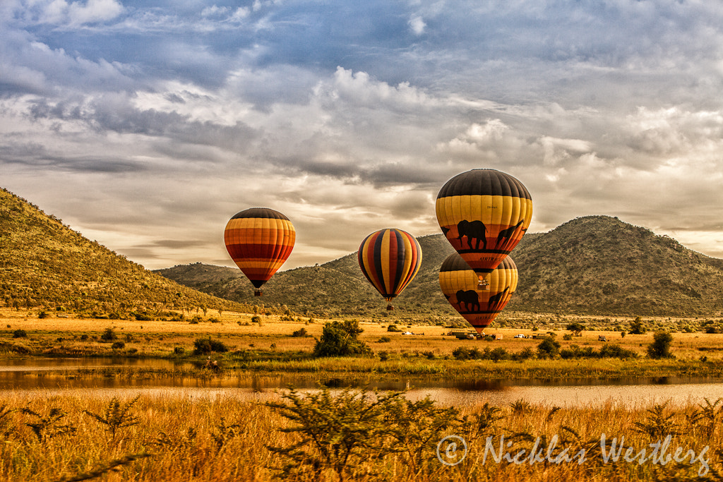 Photograph Airballons in Pilanesberg  by Nicklas Westberg on 500px