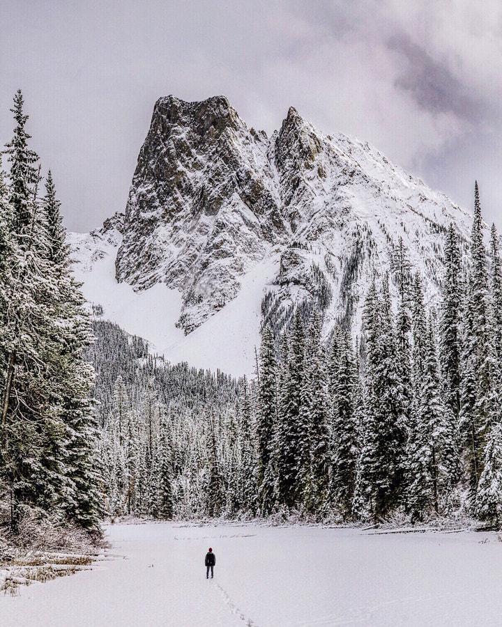 frozen emerald lake. mount burgess. bc. I