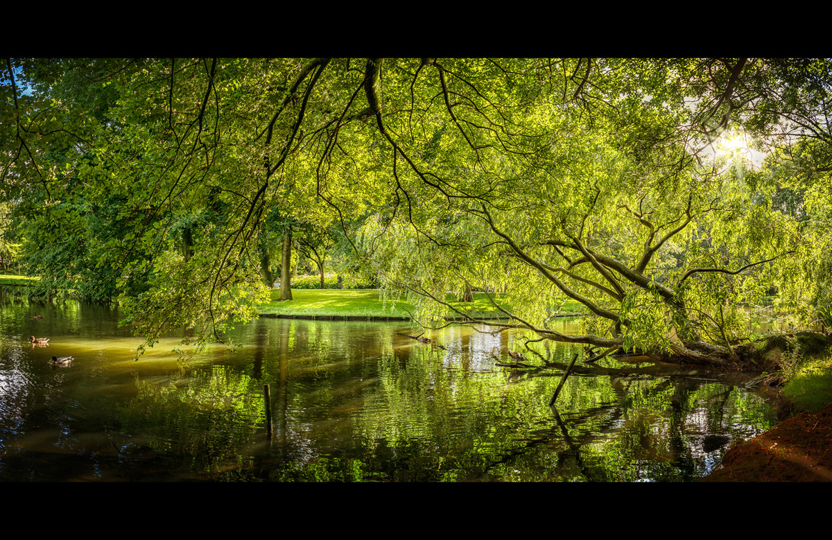 Photograph Oosterpark by Armin Barth on 500px