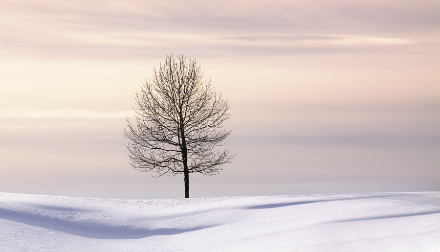 Silence de Ana Tramont en 500px.com