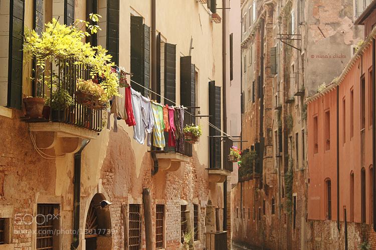 Photograph Venice by Nina's clicks on 500px