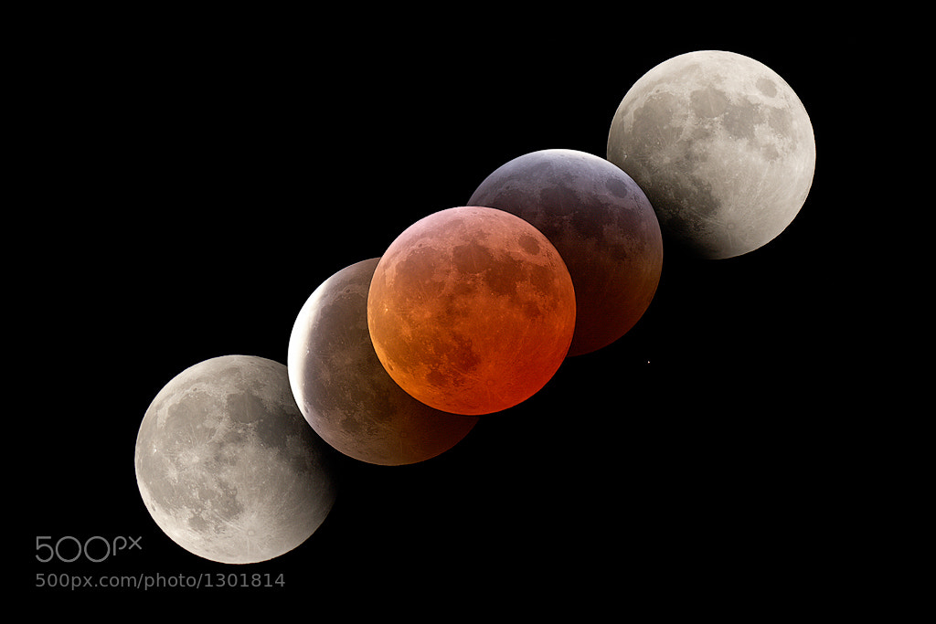 Photograph Blood red moon by Levin Dieterle on 500px