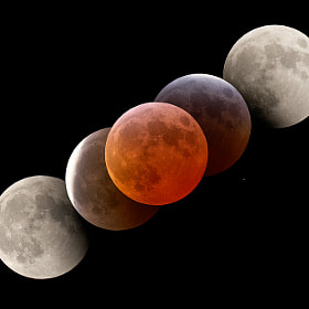 Collage of five picture taken with a focal length of 1450 mm during a total moon eclipse in March 2007.