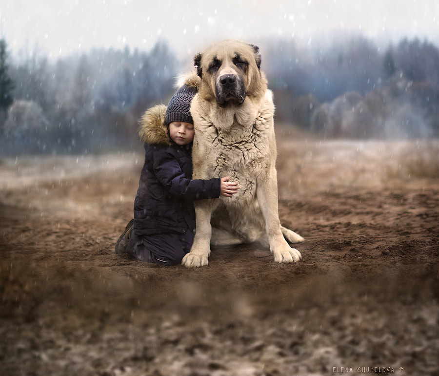 ..between winter & autumn.. by Elena Shumilova on 500px.com