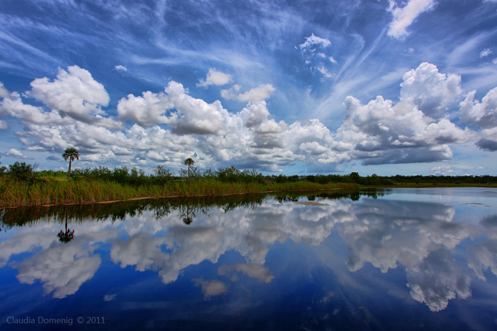 Photograph Puffy Clouds by Claudia Domenig on 500px