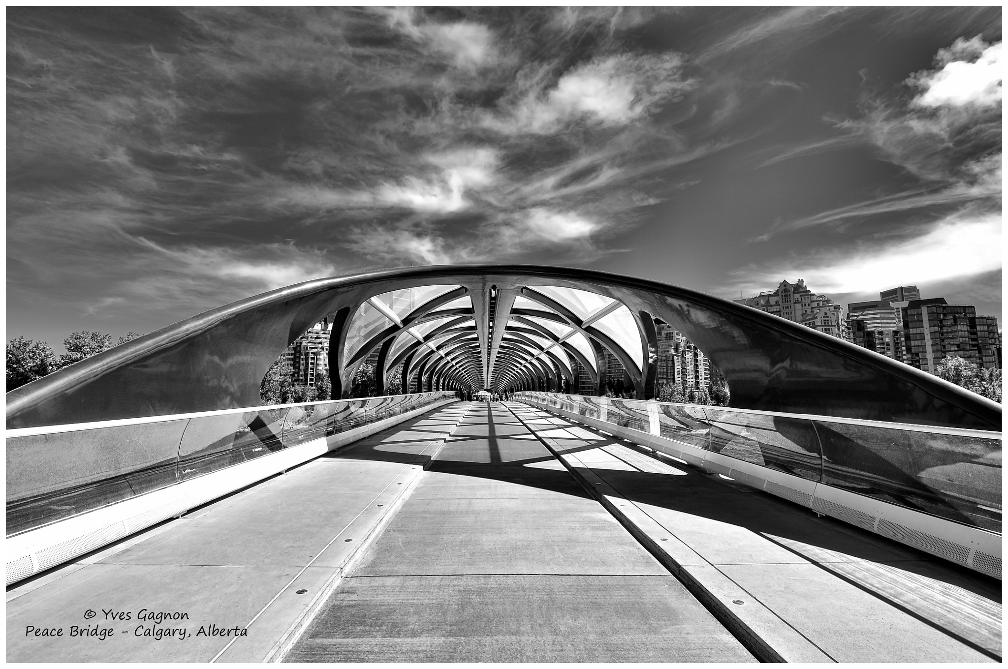 Photograph Peace Bridge, Calgary, Alberta, Canada by Yves Gagnon on 500px