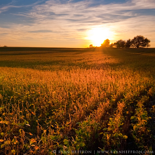 Photograph Summit Fields II by Ryan Heffron on 500px