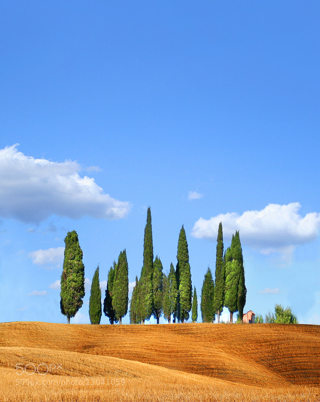 Photograph tuscany by Rami  on 500px
