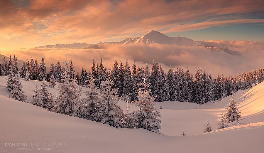 Winter new, автор — Ivan Kmit на 500px.com