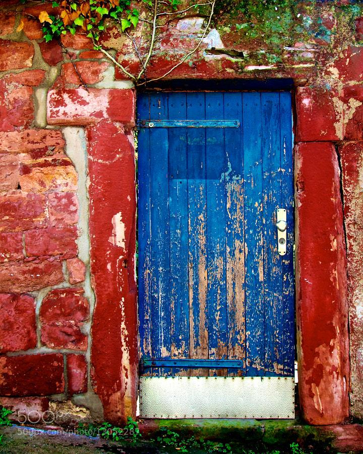 Photograph The Secret Garden Door by Tomasz Podhalański on 500px