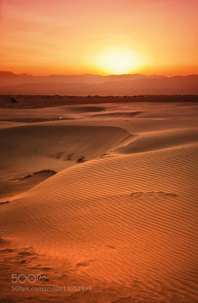 Photograph Dunes in the Ebro Delta by Lluis  de Haro Sanchez on 500px