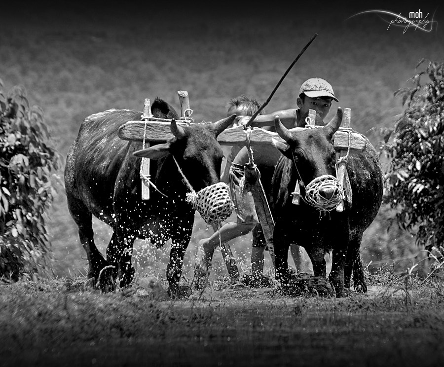 Photograph Little Farmers in action by Mohan Duwal on 500px