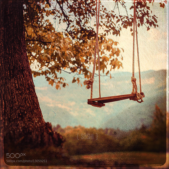 Photograph The Swing at the Top by Alex Arnaoudov on 500px