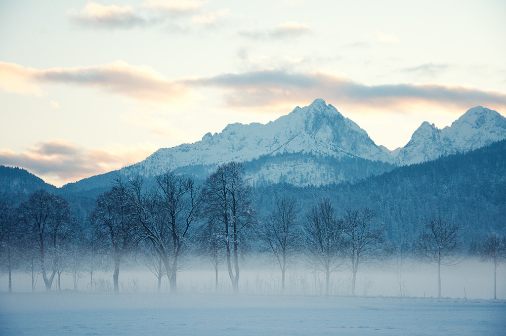 Photograph Untitled by Markus Dittweiler on 500px