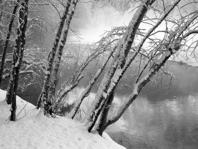 Photograph winter by Mohsen MRN on 500px