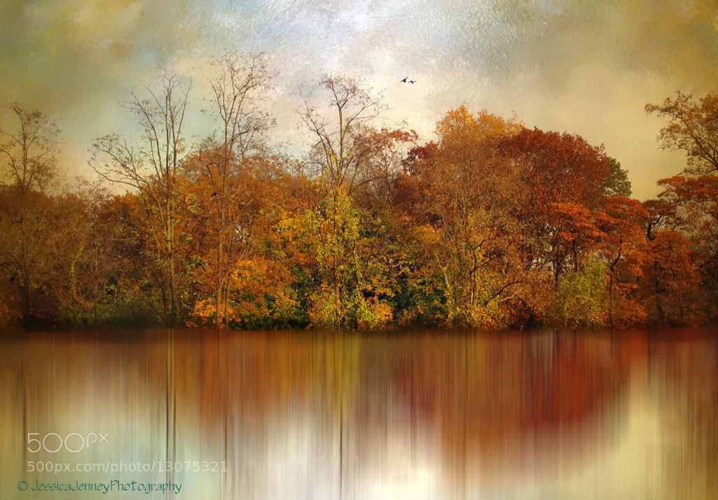 Photograph Autumn on a Pond by Jessica Jenney on 500px