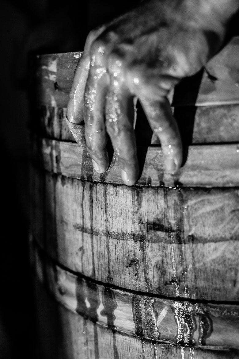 Photograph Crime de vin by Jam Juste Jam on 500px