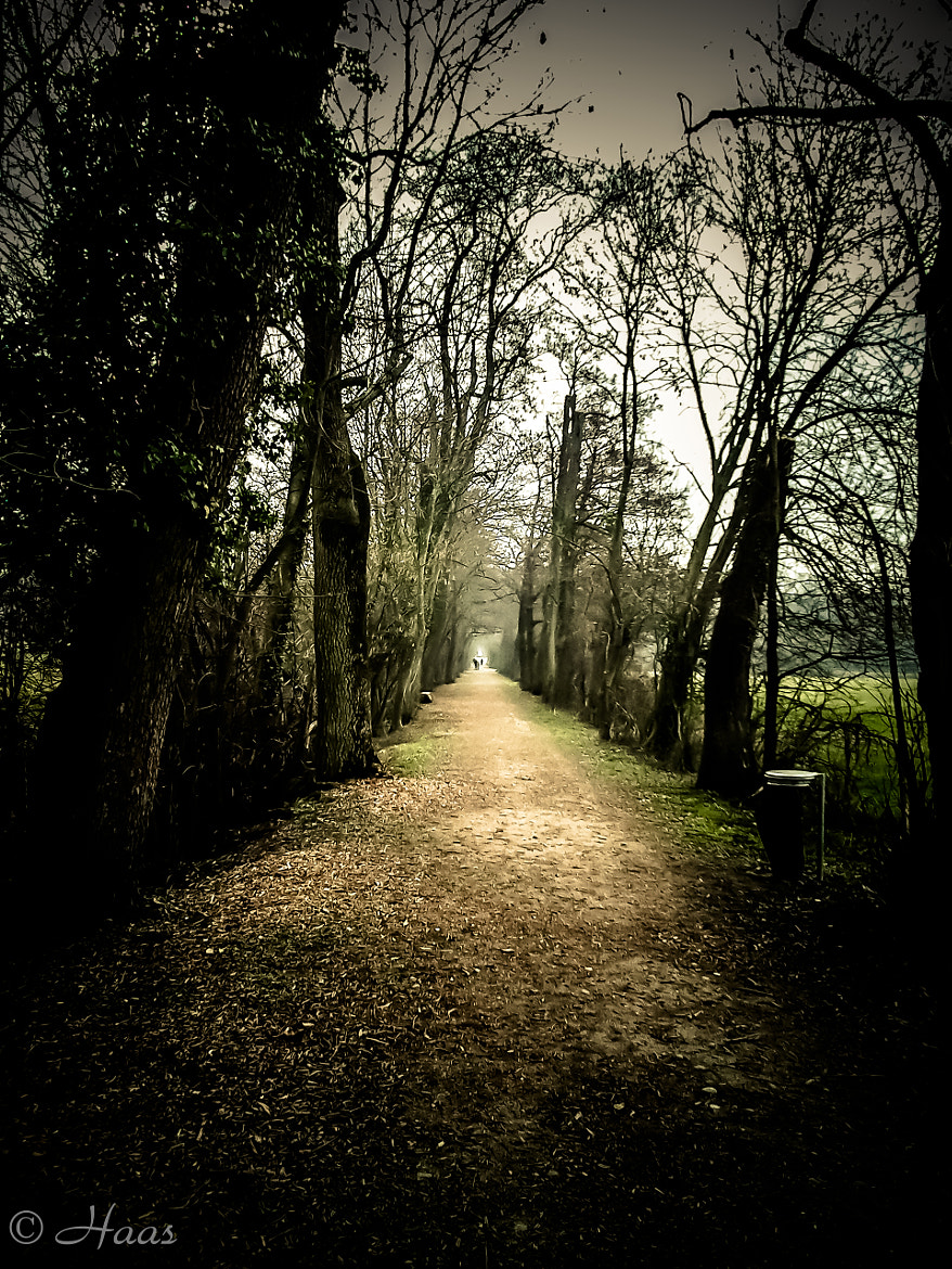 Photograph The Path.. by HC  Photos on 500px