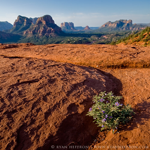 Photograph Sedona by Ryan Heffron on 500px