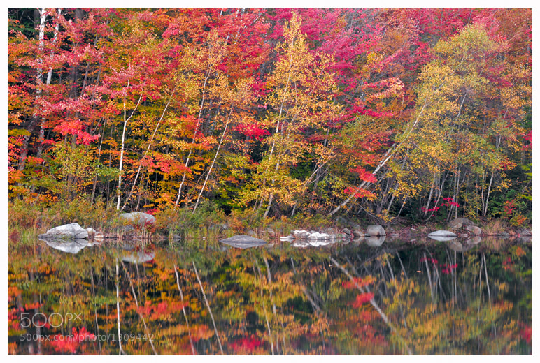 Photograph Mirror in Red by Joseph Rossbach on 500px