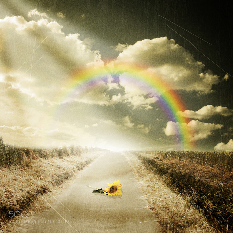 Photograph toward the rainbow by Pixel Passion on 500px