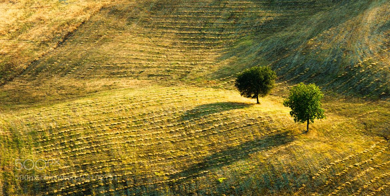 Photograph Colline Emiliane by Michele Fornaciari on 500px