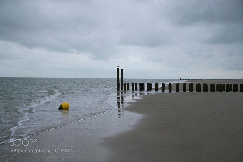 Photograph low tide at sealand by Mark van der Sluis on 500px