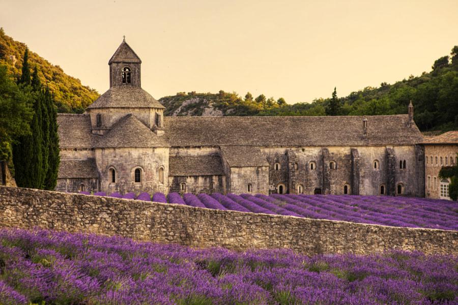 Cistercian Abbey by Béla Török on 500px.com