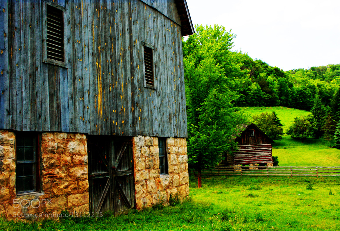 Photograph in the country by Lynne Prestebak on 500px