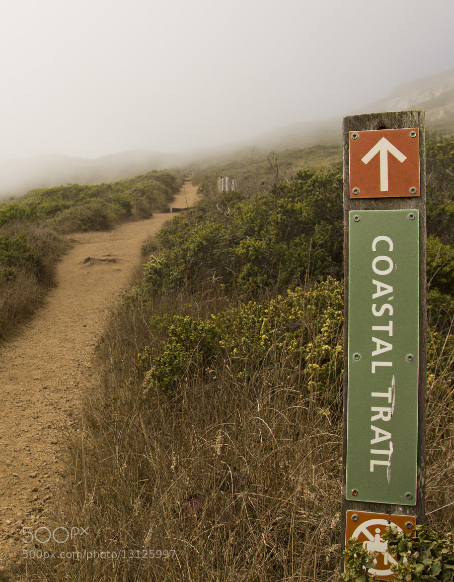 Photograph Coastial Trail by Miguel Rios on 500px