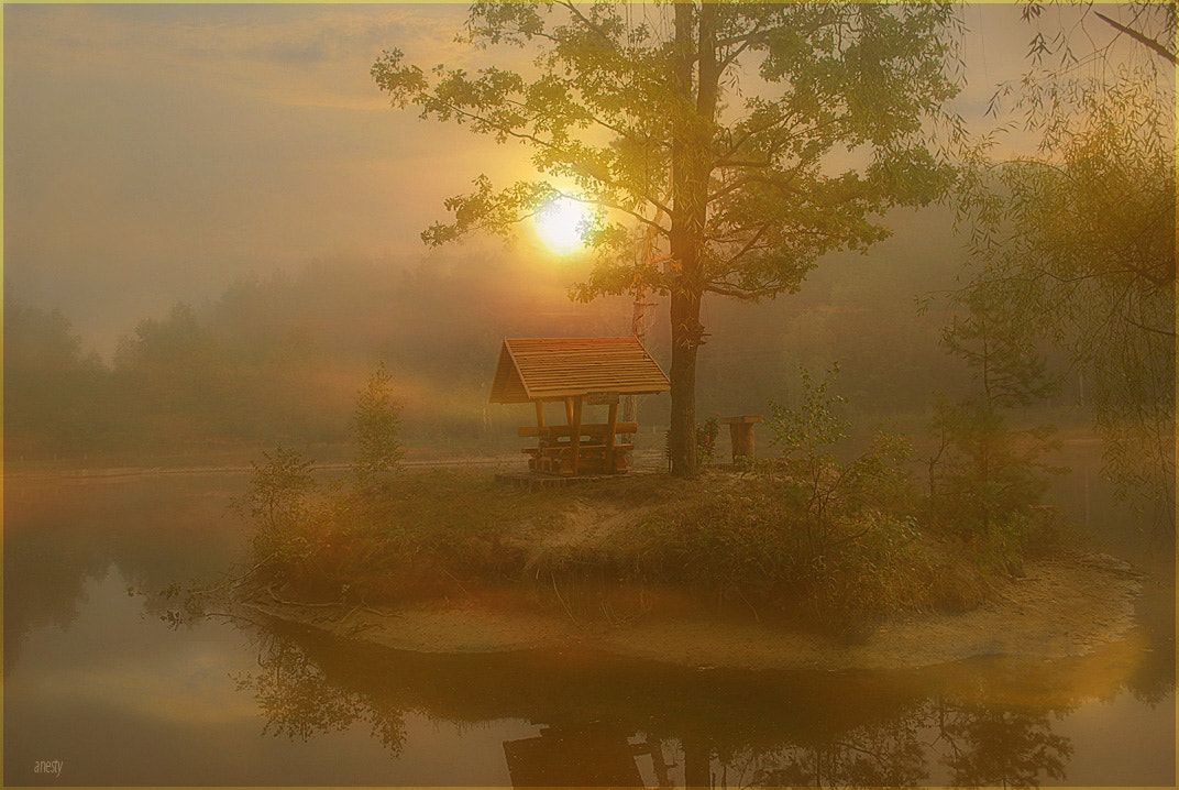 Photograph Fogs and morning ... by Anna  Ivinska-Bové on 500px