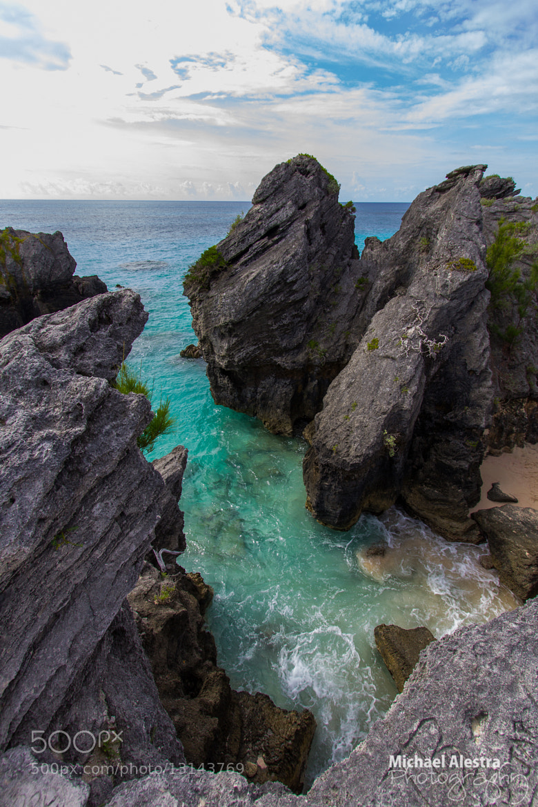 Photograph Bermuda by Michael Alestra on 500px