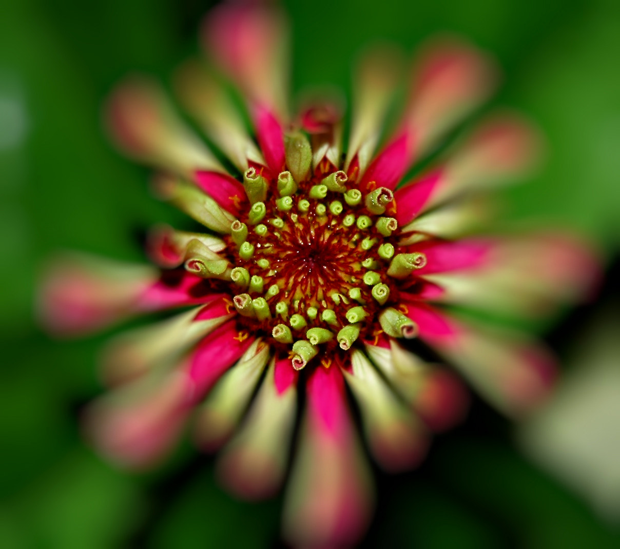 Photograph Depth of Field by Jeff Clow on 500px