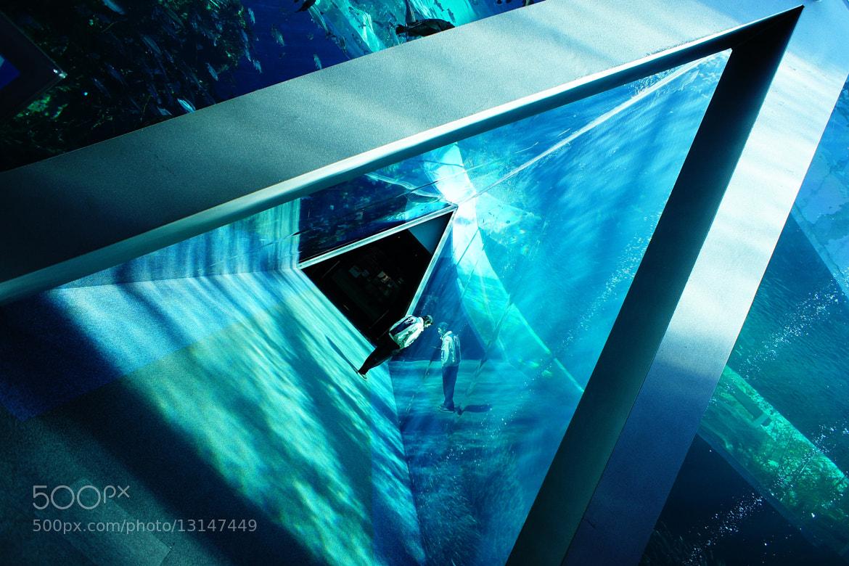 Photograph Aquamarine by ALIENIZER Photography on 500px