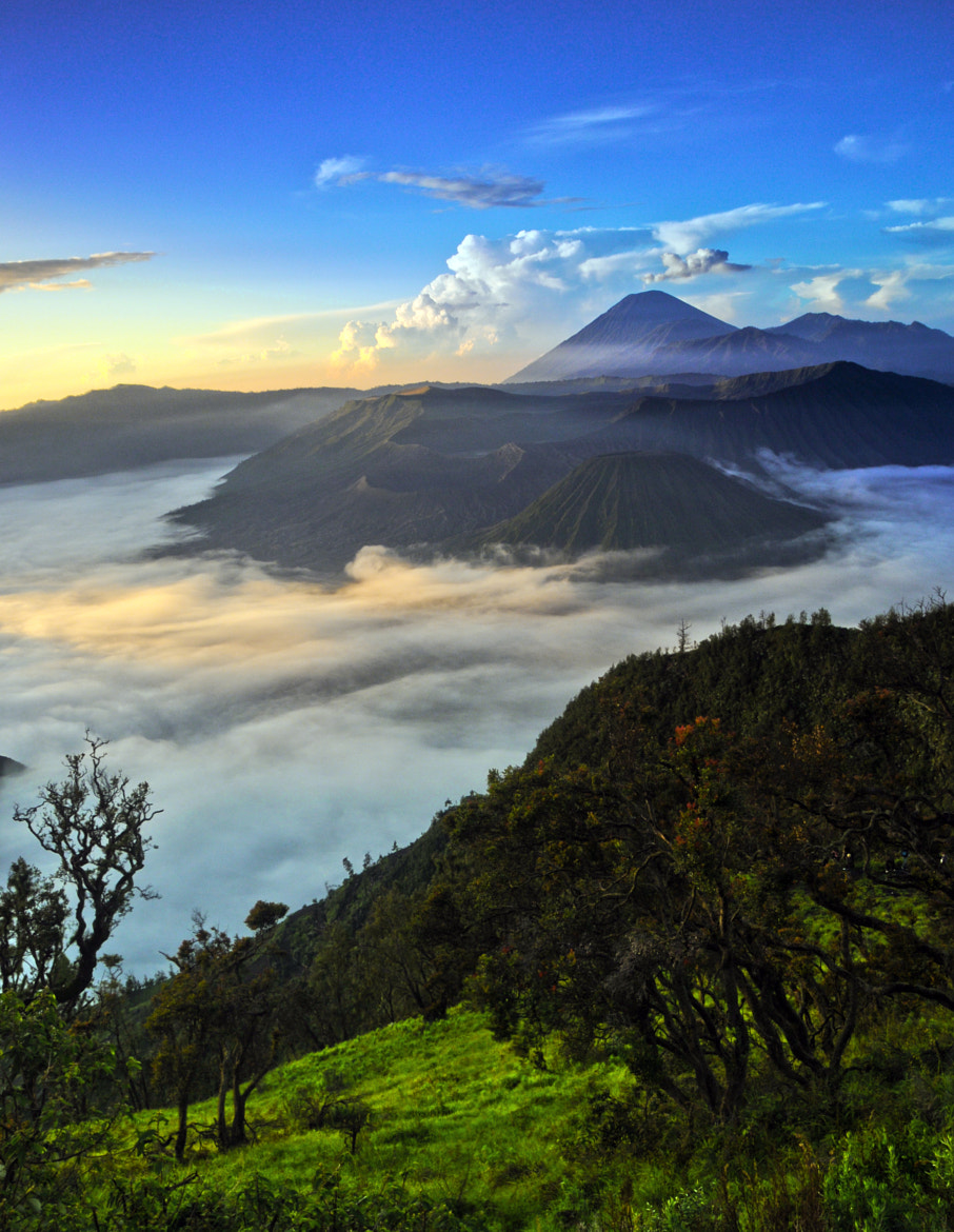 Photograph Bromo in Harmony 2 by Margo Ono on 500px