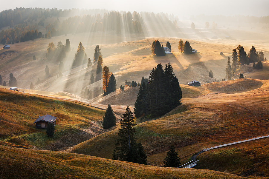 Radiance by Martin Rak on 500px.com