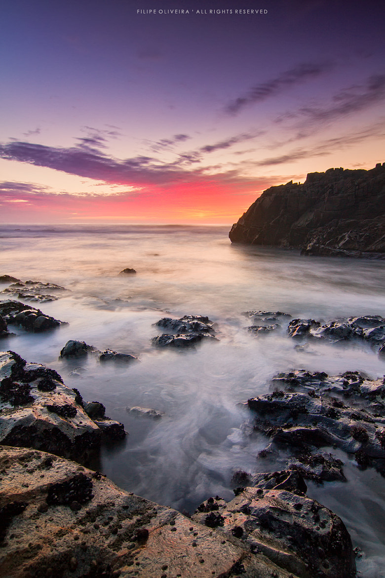 Photograph Untitled by Filipe Oliveira on 500px