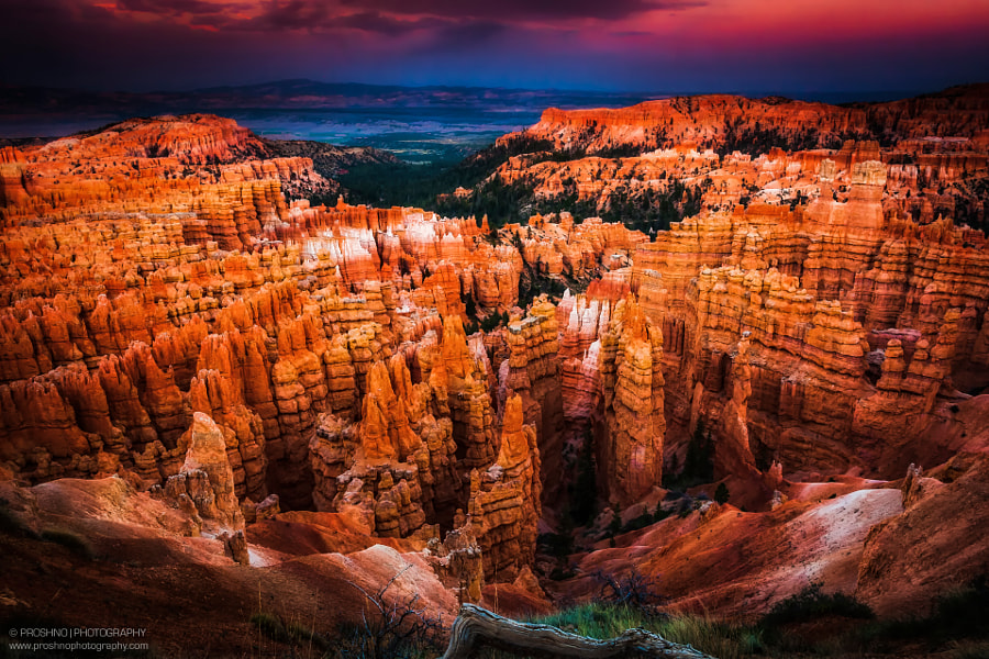 Dusk at Bryce