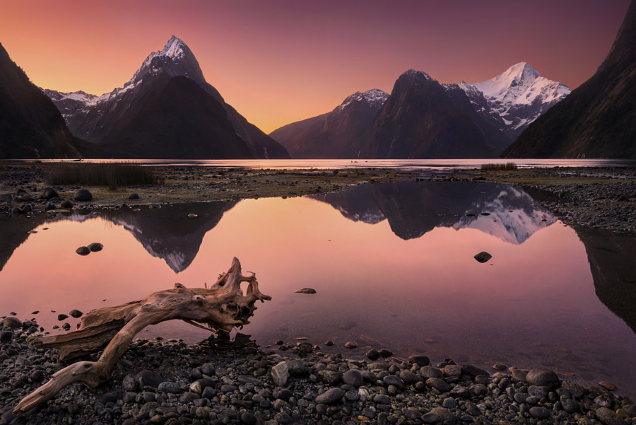 Milford Sound, New Zealand… by DK Photography on 500px.com